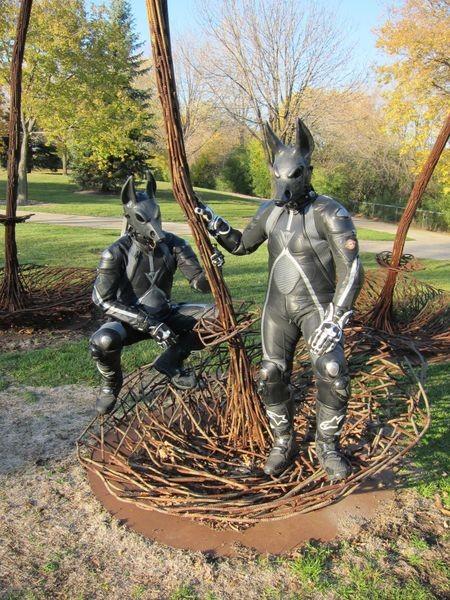 Jackals Upon the Twigs