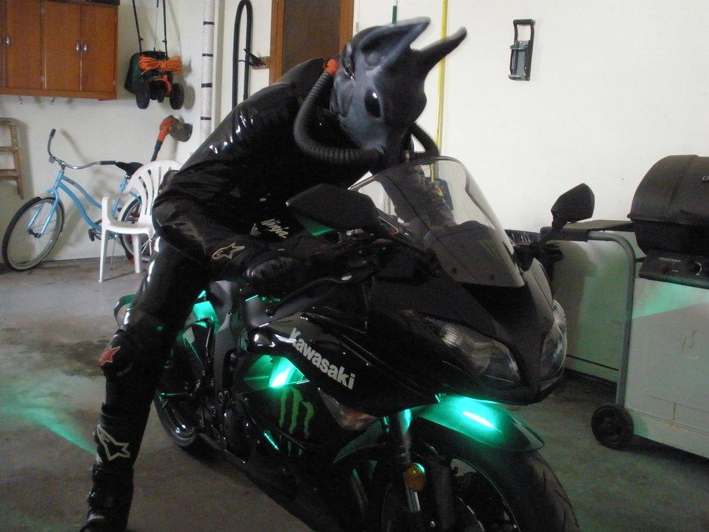 Biker Dusty Ready To Go