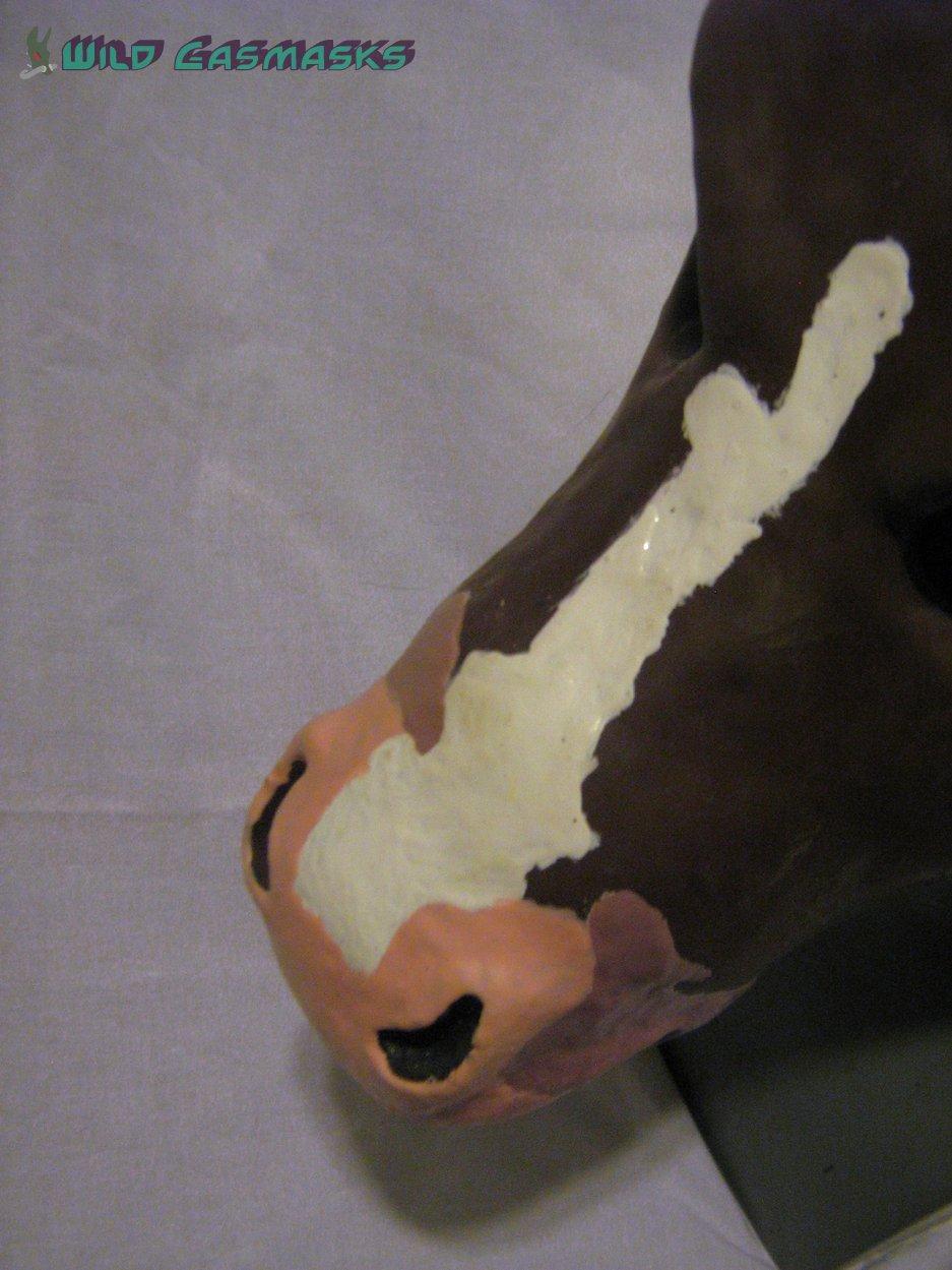 Brownie - Nose Detail
