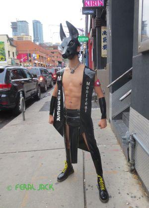 Feral Jack Outside the Nightclub