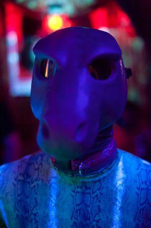 Under the Nightclub Lights