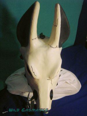 Skull Jackal - Top View