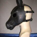Wildgasmasks HG 1 horse equine gasmask side view